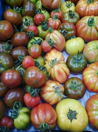 Des tomates, des vraies !!