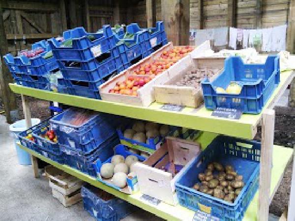 les produits prêts à être déposé dans les paniers
